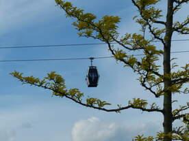 Durch Bäume fliegen - das kann die Seilbahn auf der IGA nicht.