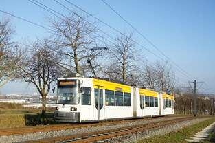 Straßenbahn Mainz / Mainzelbahn: Adtranz GT6M-ZR der MVG Mainz - Wagen 203, aufgenommen im Dezember 2017 bei der Bergfahrt zwischen Mainz-Lerchenberg und Mainz-Marienborn.