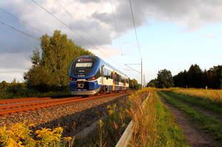 Der 632 024 auf der RB 54 von Rheinsberg (Mark) nach Berlin Gesundbrunnen am 23.08.2016 in Nassenheide.