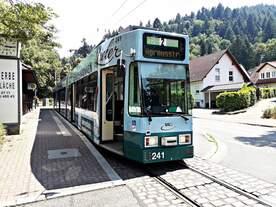 Der Duewag GT8Z Tw 241 am 30.6.2018 an der Haltestelle Dorfstraße in Freiburg-Günterstal.