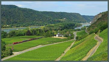 185 147-6 der DB Cargo passiert am 24.07.2020 den Weiler Hubertusburg inmitten ausgedehnter Weinstöcke unterhalb der Burgruine Hammerstein bei Leutesdorf.