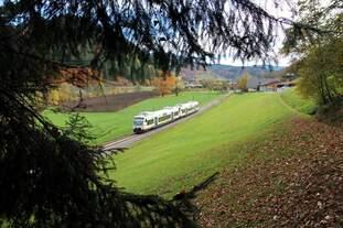 SWE 87386 mit VT 507  Vogtsburg  und 518  Stadt Hausach  hat gerade Oppenau verlassen und ist auf dem Weg nach Freudenstadt (04.11.2015)