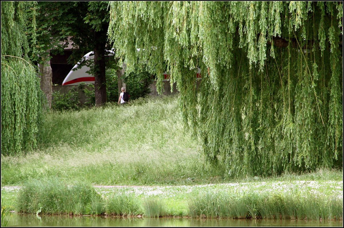 am rande des parkes fahren die z ge dahin befindet man sich im stuttgarter schlossgarten. Black Bedroom Furniture Sets. Home Design Ideas