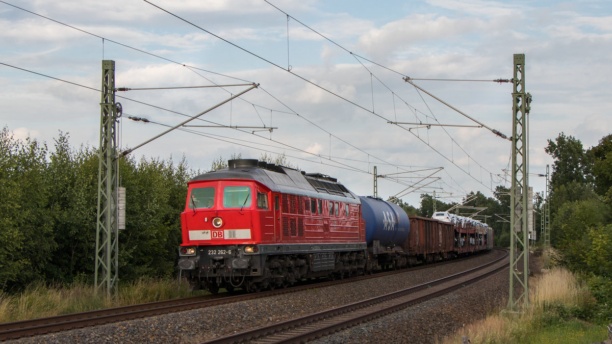 232 262-6 in Syrau am 25. Juni 2018.