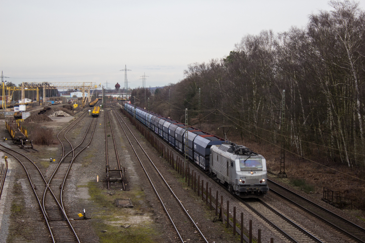 37016 am 04.03.2017 in Duisburg-Wedau