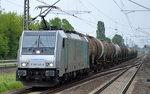 TRANSPETROL mit Railpoollok E 186 145-9 und einem Kesselwagenzug am 26.05.16 Berlin-Hohenschönhausen.