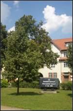 Mit einer Kipplore wird in Hennigsdorf b.